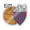Calcio10