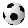 Fußballfan1