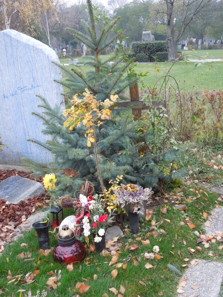 Decker Karl Ehrengrab Zentralfriedhof