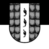 Brigantium0815